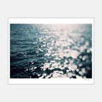 Sea Spark 330×254mm