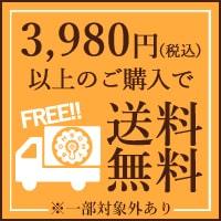 3,980円(税込)以上のご購入で送料無料