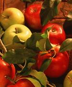 野菜や穀物などの農産物