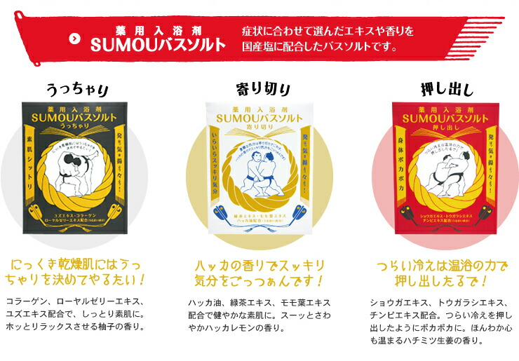 SUMOUバスシリーズ特集