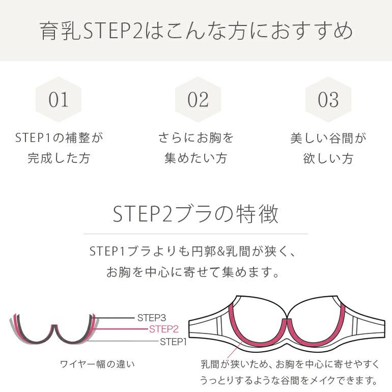 ステップ2育乳補整ブラの特徴