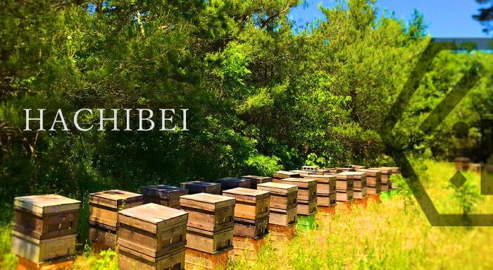 はちべい国産純粋はちみつ|新潟県産の八米の蜂蜜は、お歳暮やお中元、ギフトにも新潟の手土産として人気のハチミツです。