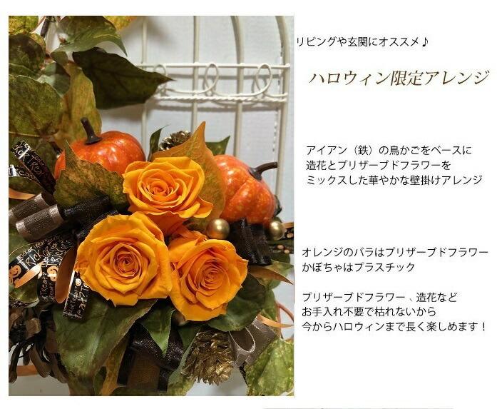 リビングや玄関にオススメ♪ ハロウィン限定アレンジアイアン(鉄)の鳥かごをベースに造花とプリザーブドフラワーを ミックスした華やかな壁掛けアレンジ オレンジのバラはプリザーブドフラワー かぼちゃはプラスチック  プリザーブドフラワーも造花など お手入れ不要で枯れないから  今からハロウィンまで長く楽しめます! サイズ 縦約36cm、横約22cm  花材 造花 バラ、ヘデラ(プリザーブドフラワー)、 松カサ、カラマツ(自然素材) かぼちゃ(フェイク)、リボン 鳥かご(鉄)