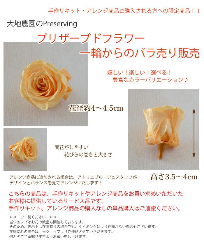 大地農園のPreserving プリザーブドフラワー かのん 一輪からのバラ売り バラLサイズ 1輪 花径約4〜4.5cm 高さ3.5〜4cm 嬉しい! 楽しい!選べる!豊富なカラーバリエーション♪開花がしやすい花びらの巻きと大きさ