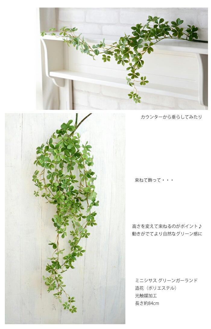 深みのある色合いだからお手持ちの花瓶や花器にいけたりカウンターから垂らしてみたり 束ねて飾って・・・高さを変えて束ねるのがポイント♪ 動きがでてより自然なグリーン感に  ミニシサス アイビーバイン 造花(ポリエステル) 光触媒加工 長さ約84cm