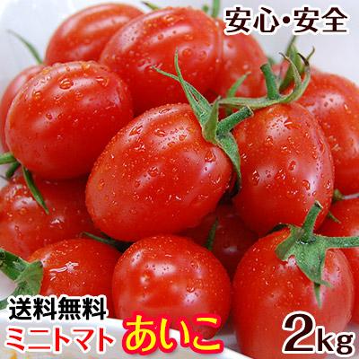 ミニトマト あいこ