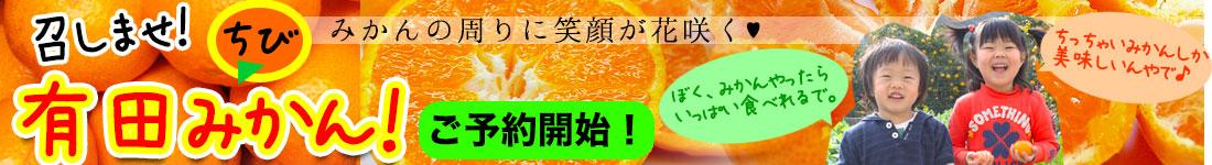 有田みかんご予約開始!