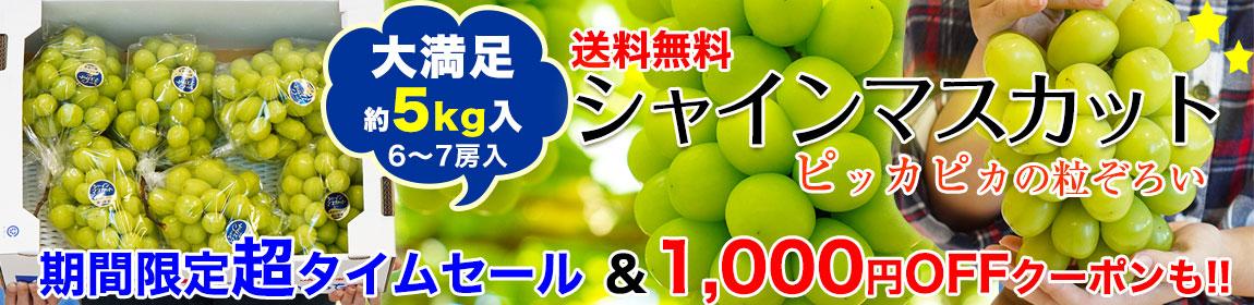 岡山県産シャインマスカットたっぷり5kg!超特価&クーポンでお買得!