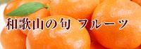 和歌山の旬 フルーツ、果物