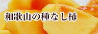 和歌山の種なし柿