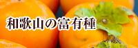 和歌山の富有柿