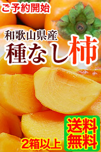 和歌山のたねなし柿 予約開始