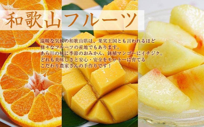 あら川の桃に鉢植マンゴー、デコポン(不知火)、いちじく、各種巨峰(ぶどう)に青梅!和歌山の旬のフルーツを召しあがれ