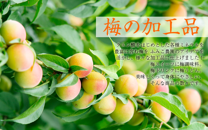 すっぱいだけじゃない!梅蜜に梅グラッセ、梅ジュースに梅キャンディ、梅スイーツに梅みそ、梅マヨネーズ、梅エキス…いろんな梅の美味しさ、手軽にどうぞ♪