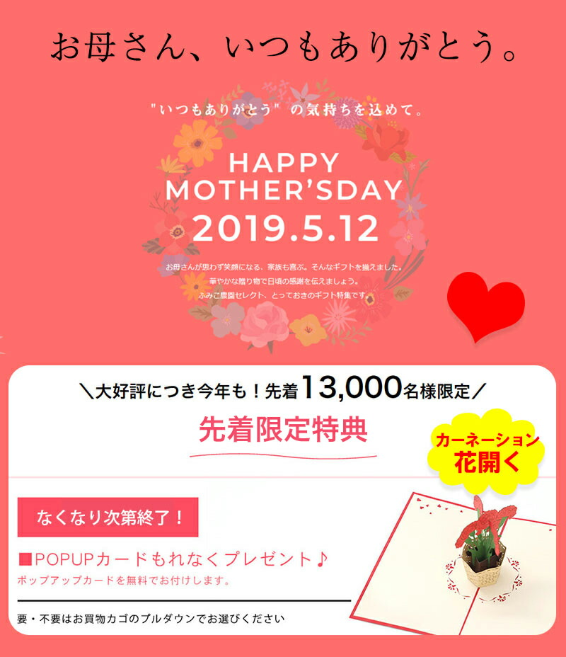母の日2019 早期予約特典!