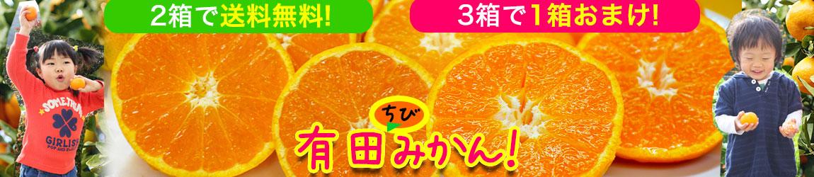 小さいみかんは甘くて美味しい!地元和歌山県人が競って食べる甘くて美味しい有田みかんを 買うほどお得にお届けします!2セットから送料無料