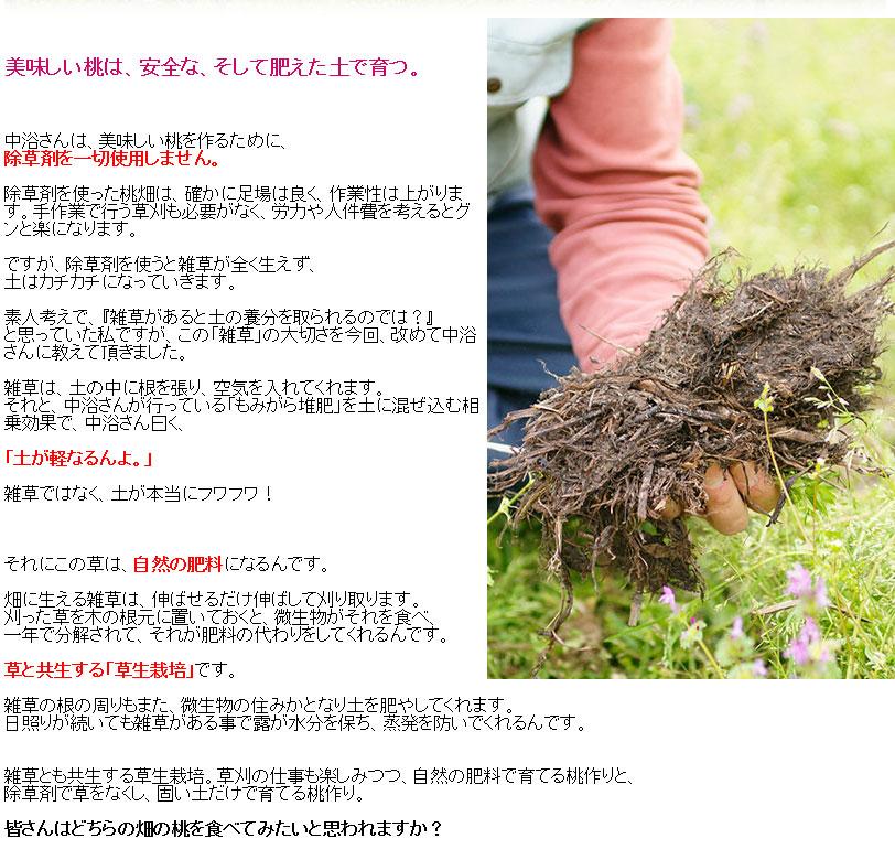 草も一年かけて自然の肥料になるんです。