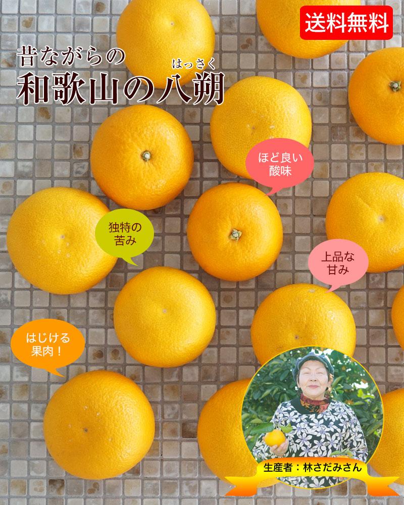和歌山の美味しい八朔(ハッサク)お届けします。