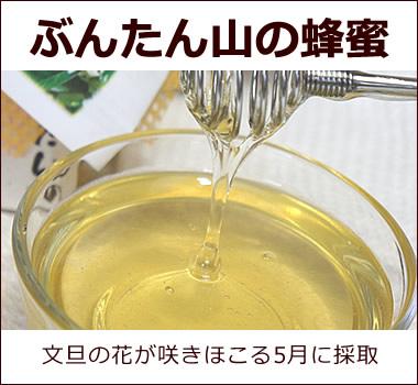 ぶんたん山の蜂蜜