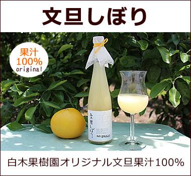 白木果樹園オリジナル。文旦果汁100%無添加ジュース【文旦しぼり】