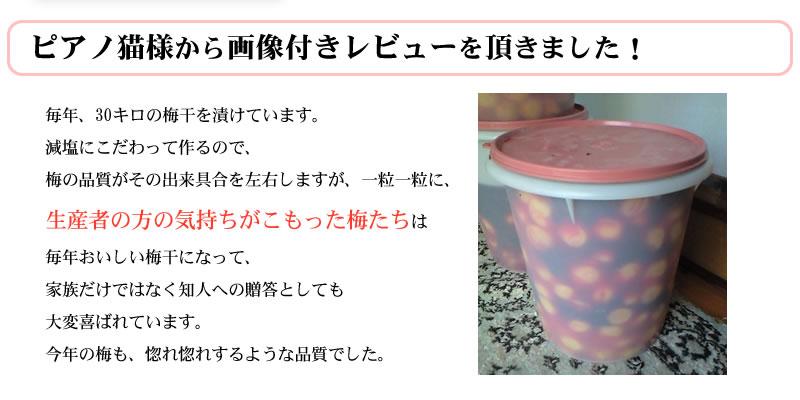 紀州生梅で梅酒を漬けたお客様からの投稿画像