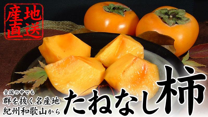 紀伊国屋文左衛門本舗厳選 生産量日本一和歌山の柿