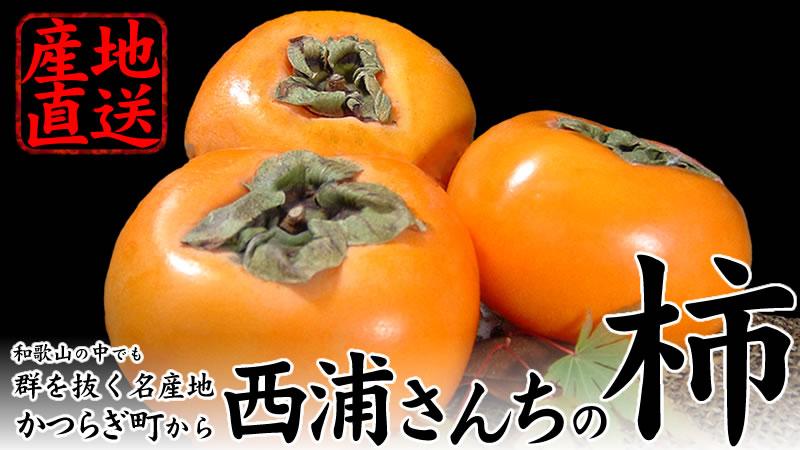 和歌山県かつらぎ町から西浦さんちの柿(かき・カキ)を産地直送