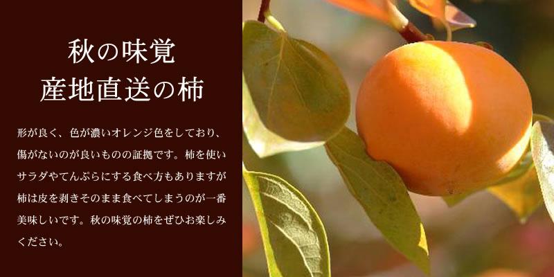 秋の味覚産地直送の柿