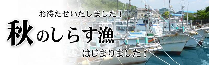 日本一魚の旨いとも言われている湯浅湾