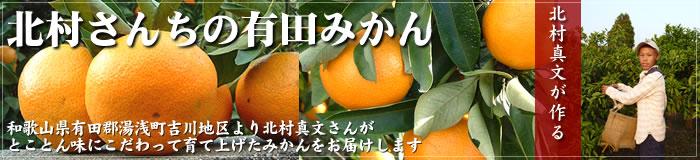 北村さんちの和歌山みかん