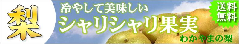 和歌山の梨
