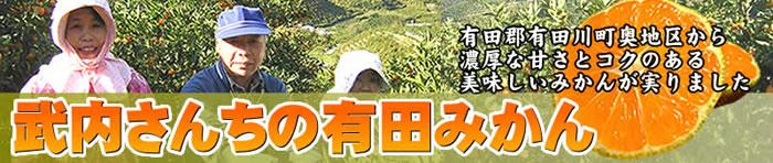 武内さんちの和歌山みかん