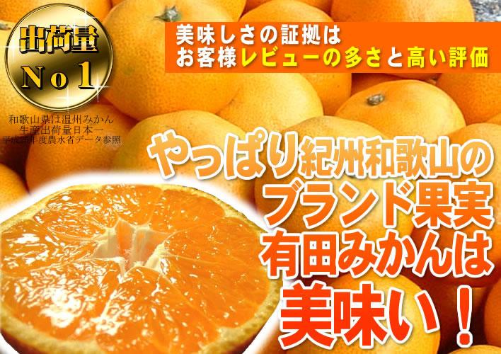 やっぱり和歌山の有田みかんは美味い