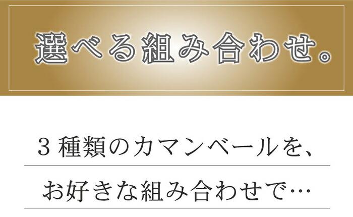 カマンベールチーズ【北海道クレイル】【送料無料】【産地直送】