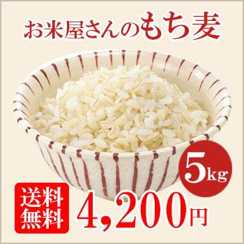 もち麦5kg