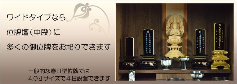 bt-0135-db-7.jpg