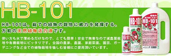 植物活力液・HB-101:万能の天然植物活力液です