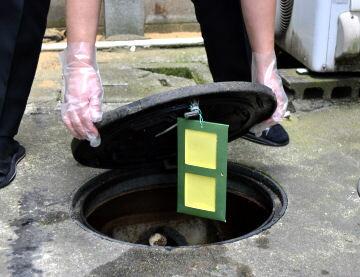浄化槽用殺虫プレート 蒸散型殺虫プレート 浄化槽のチョウバエ・ユスリカ・アメリカミズアブ駆除
