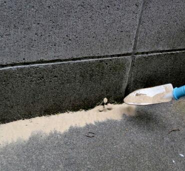 イカリ消毒 ムシクリン粒剤 大容量2kg 蟻駆除用殺虫剤
