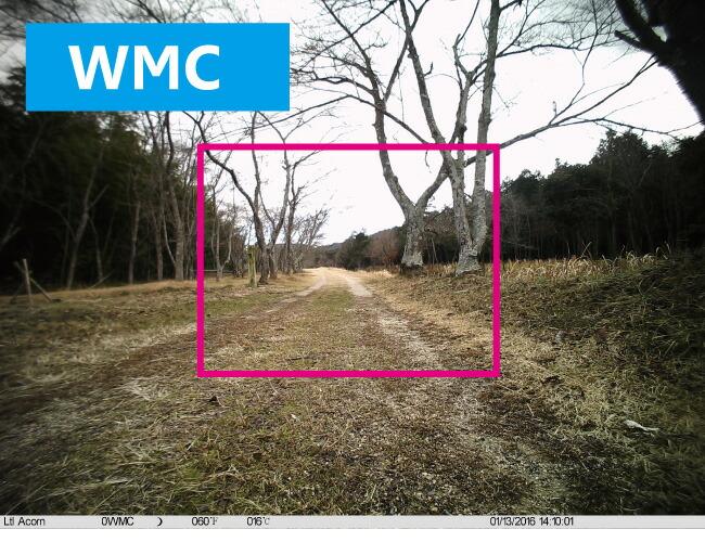 WMCの画角画像