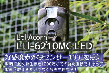赤外線センサートレイルカメラ Ltl Acorn Ltl-6210MC 850NM/940NM