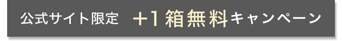 公式サイト限定+1箱無料キャンペーン