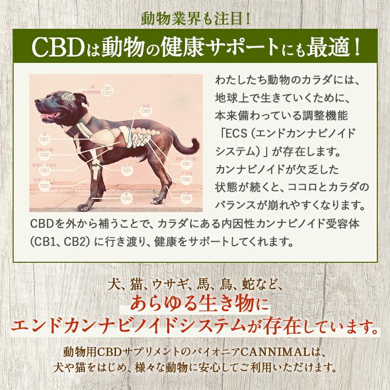CBD オイル ペット 動物 犬 猫 イヌ ネコ PET用