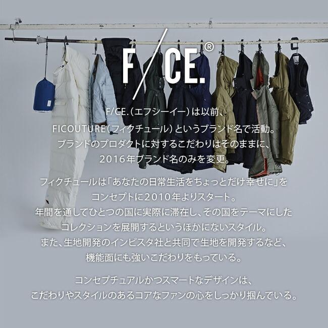 エフシーイー FCE