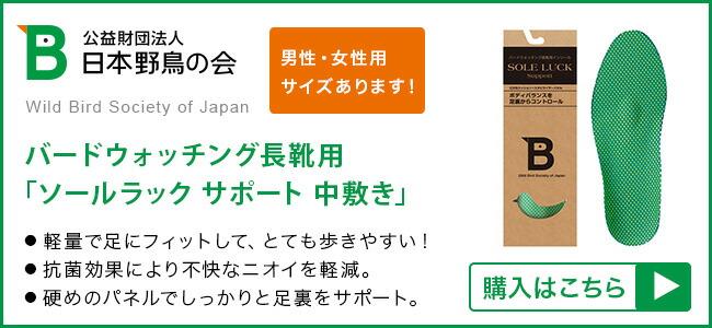 日本野鳥の会ソールラックサポート