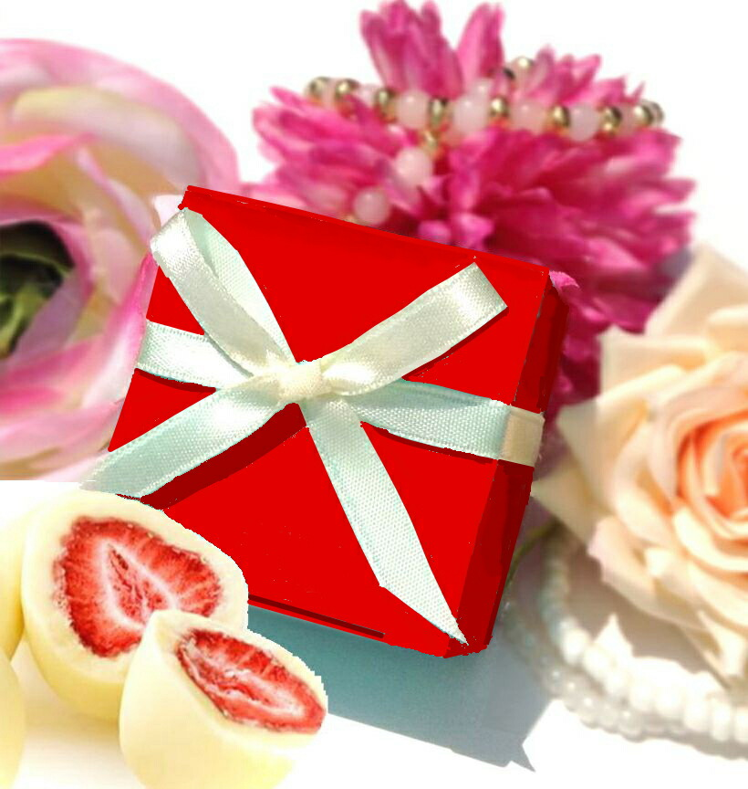 バレンタインチョコ・クリスマスやプチギフトに人気のチョコ