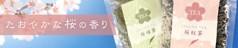 桜の季節に。たおやかな桜の香りのフレーバー紅茶・緑茶 サクラティー
