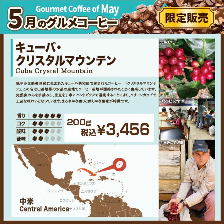 5月グルメコーヒー キューバ・クリスタルマウンテン 【キャピタルコーヒー/CAPITAL】