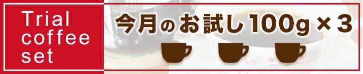 今月のお試しコーヒー3種セット【キャピタルコーヒー/CAPITAL】
