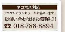 お問い合わせはお気軽に!018-788-8894